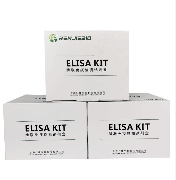 人白细胞介素34(IL-34)ELISA试剂盒